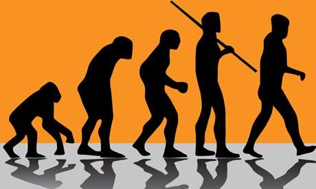 Evolution-illustration-010